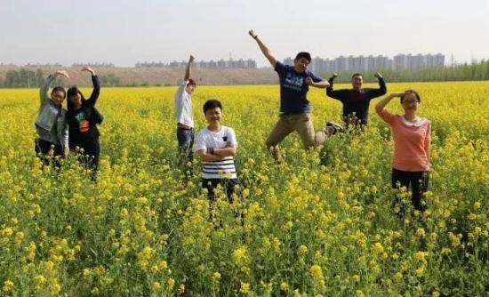 北京南城最大的千亩油菜花海 4月震撼来袭