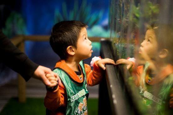 内蒙首家全生态动物主题乐园开园