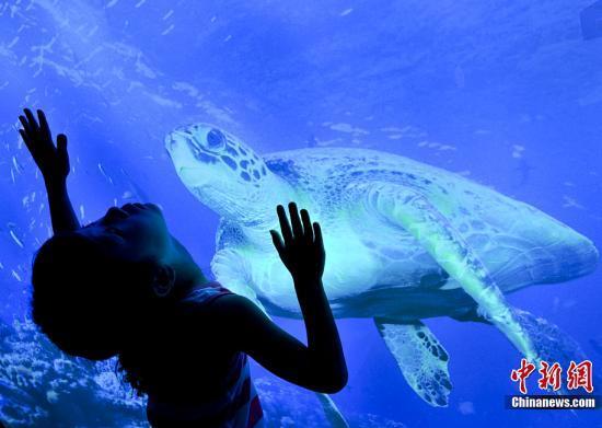 世博落幕发表《丽水宣言》呼吁保护海洋