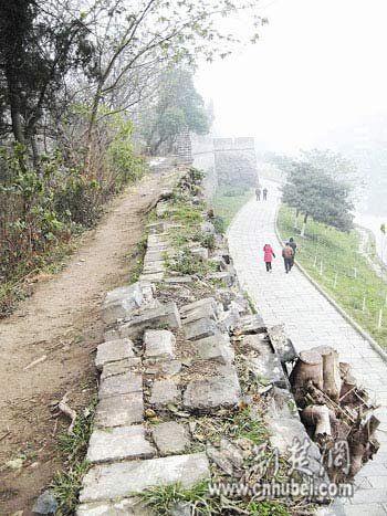 荆州古城墙损坏严重 专家称树根是城墙天敌(图)