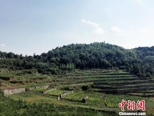 """贵州生态治理:以""""绿色思维""""建""""美丽乡村"""""""