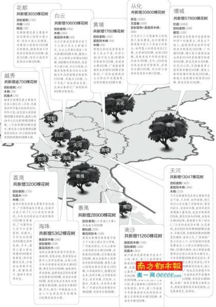 未来三年广州将增20万棵主题花树 快看看你家附近将种哪些花