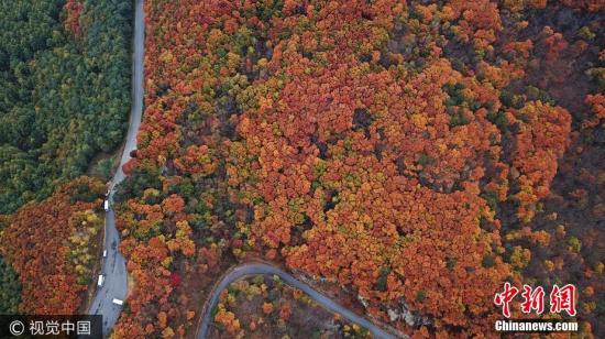辽宁本溪景区公路秋日好风景 层林尽染令人神往