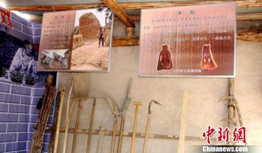 甘肃省长话乡村旅游:拿捏好土气、老气、生气、朝气