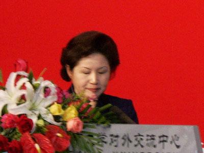 图文:文化部副部长孟晓驷