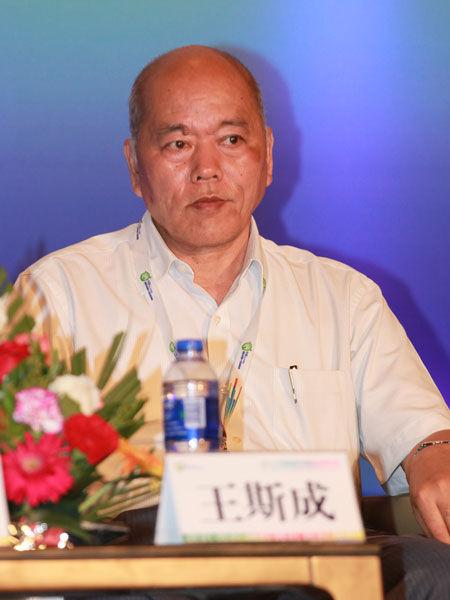 """""""2013中国国际太阳能高峰论坛""""于8月2日在大同市举行。上图为国家发改委能源研究所研究员王斯成。(图片来源:新浪财经 梁斌 摄)"""