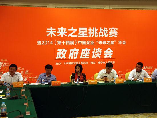 """""""第十四届中国企业未来之星年会""""于2014年6月27日-29日在湖北省咸宁市举行。上图为未来之星-政府座谈会。(图片来源:新浪财经 梁斌 摄)"""