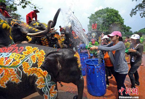 """图文:泰国宋干节 大象泼水让游客""""湿身"""""""