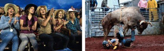 夏威夷 最后的牛仔(图)