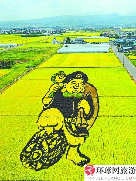 """日本农民""""种""""稻田画 精美且不影响收成"""