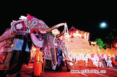 斯里兰卡:阿育吠陀的养生之道(图)