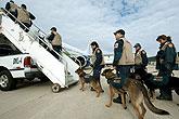 美国救援队准备出发