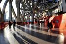 我爱北京――鸟巢