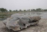 奇石山河畔的龟蛇石