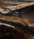 紫金矿业污染福建汀江