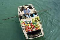 下龙湾上卖水果的商贩
