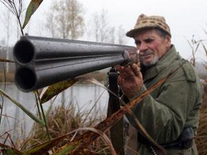 猎杀和砍伐将东北虎逼入绝境