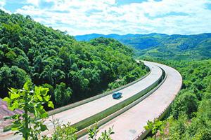 """破解""""死亡之路""""良方:建立生态高速公路"""