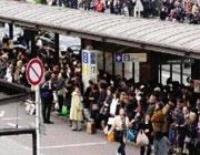 记者亲历日本民众抗震素质