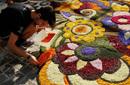 意大利山城的奇迹花节