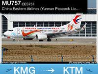 独家:东航客机飞7小时绕30圈降落尼泊尔