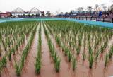 图文:第七届中国长春国际农博会在长春举行