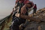 图文:徒手捕捞在萧山被禁止