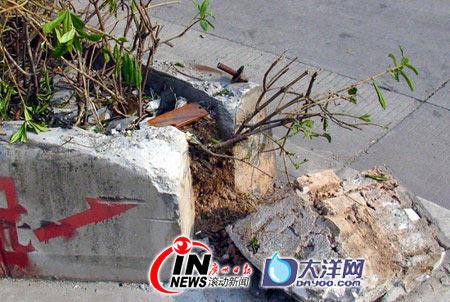图文:副教授遭枪击现场路边石被撞碎