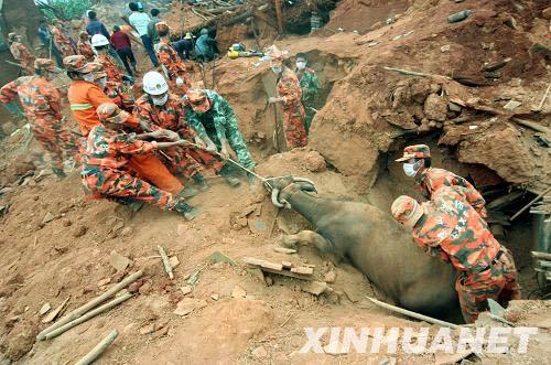 攀枝花会理地震已致32人死亡80余万人受灾