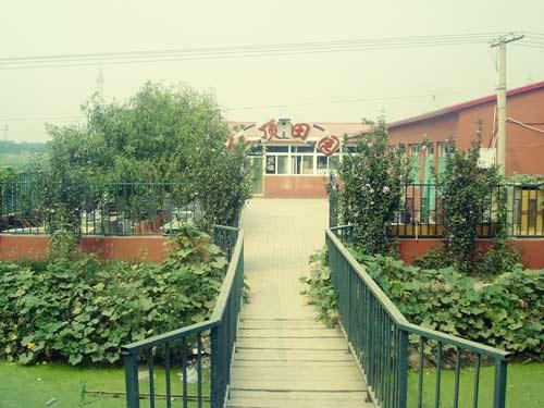 天津最美乡村评选候选村庄:军训基地生态园