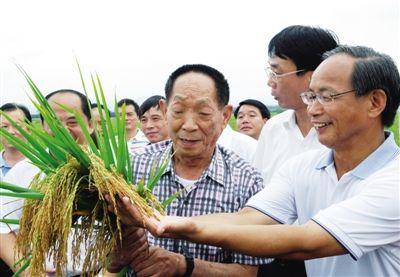 2010年7月,袁隆平广西田间地头推广水稻良种。资料图片