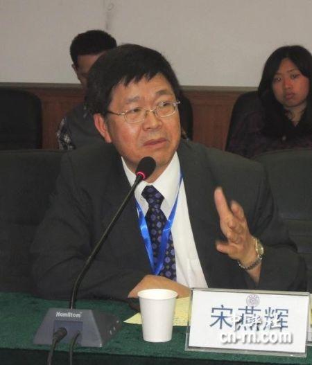 """台湾""""中央研究院""""欧美研究所研究员宋燕辉"""