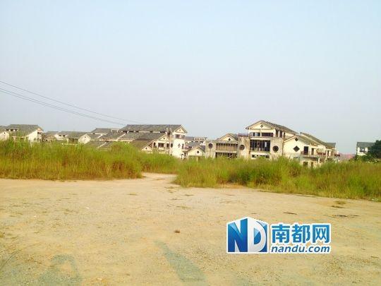 征地过后,和东南亚美食城同期建起来的房子荒废在杂草里。