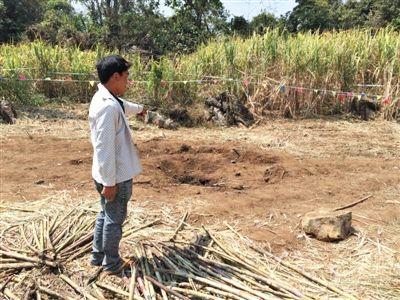 昨日,在大水桑树村,村民向记者展示13日造成5死8伤的炸弹事件弹坑。