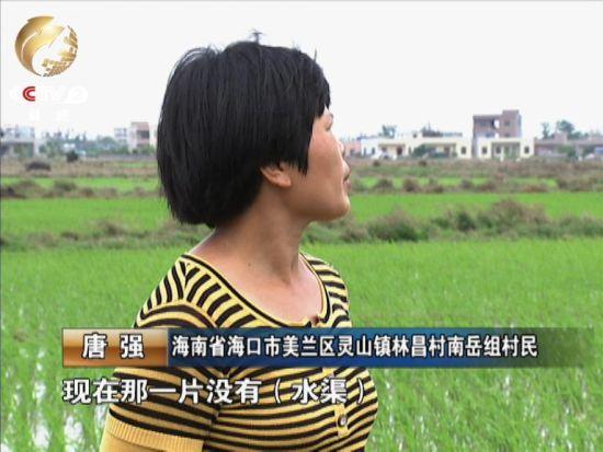 乡民唐强家的十亩地中有五亩撂荒。起因之一是如今没有了沟渠,无奈浇灌。