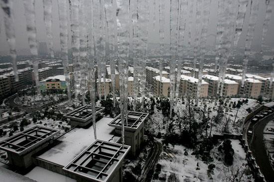 图文:郴州城腐竹v图文冰雪黄瓜胡萝卜图片