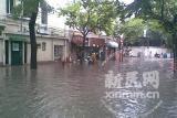 上海强暴雨已造成1.1万户民居进水(组图)