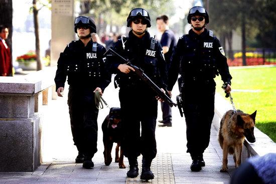Image result for 北京巡逻特警