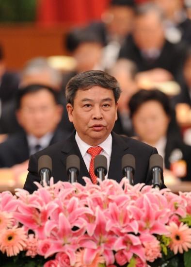 图文:朱振中委员发言