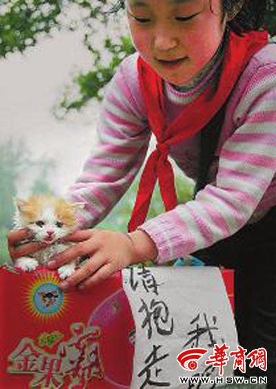 """姐姐王雨夕说,放学后发现了这只""""小可爱"""",""""想带它回去,让它有个温暖的"""