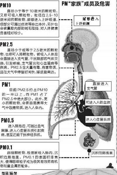 PM2.5危害示意图