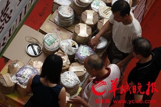 普洱茶价格腰斩藏茶异军突起东莞茶市格局悄然变化