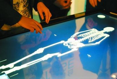 瑞典女王储走进世博瑞典馆体验虚拟解剖台(图)