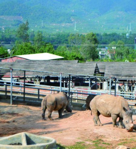 野生动物繁育基地