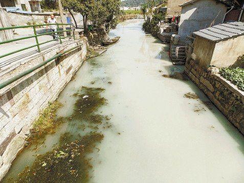 """""""牛奶河""""事发绍兴,为石料场违规排污所致"""