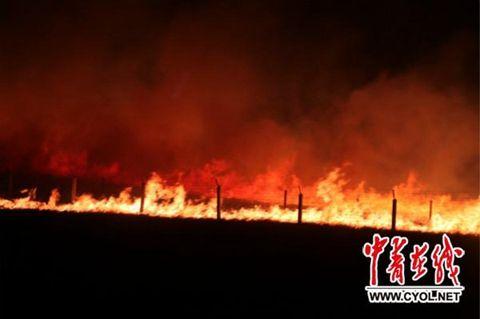 未来一周呼伦贝尔晴热少雨 森林草原防火形势