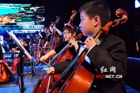 湖南首支小学生交响乐团献艺平均登台年龄仅育小学翔帆三图片