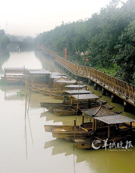 罗南村处处可见水乡美景   文/图 羊城晚报记者 岑杰昌实习生 潘