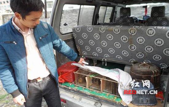 金石桥派出所根据野生动物保护法的相关规定