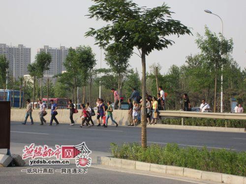 石家庄20名小学生每天横穿二环路上学
